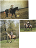 Collage of three pictures of officers on horseback