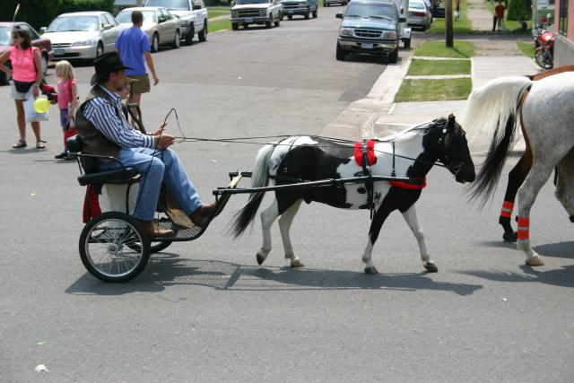 Man in mini carriage driven by pony in parade