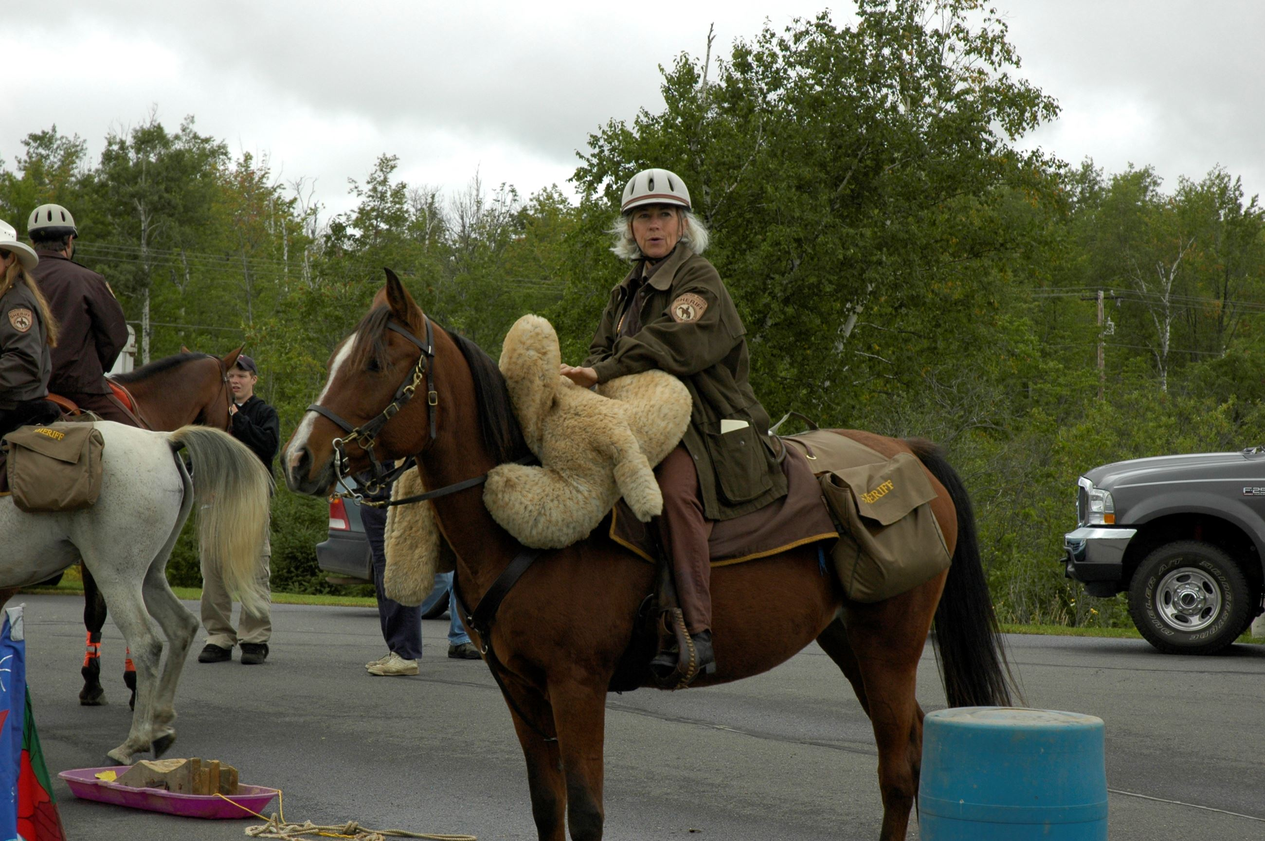 Officer giving horse demonstration